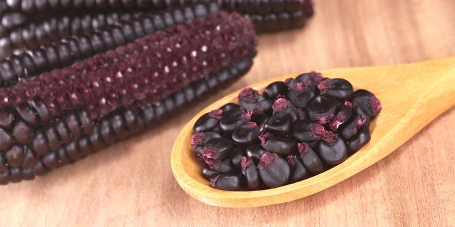 Grains of Peruvian purple corn