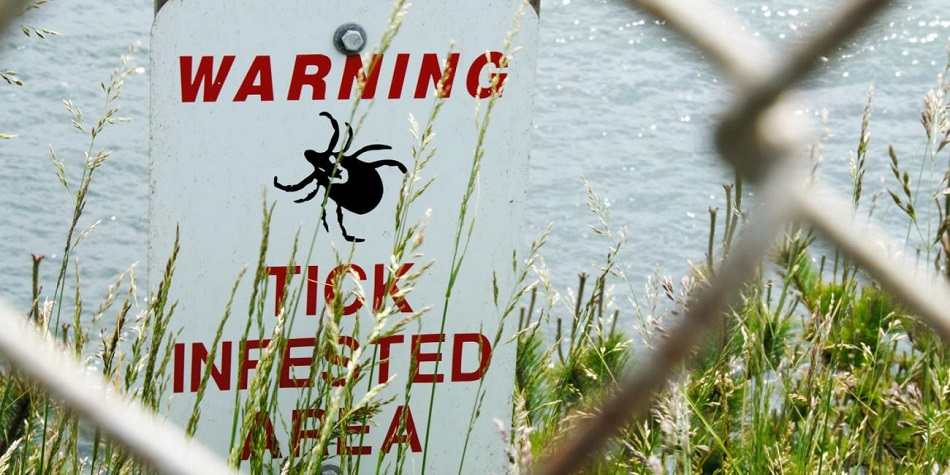 tick warning